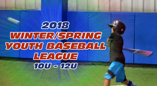 Baseball Winter/Spring Indoor Youth League